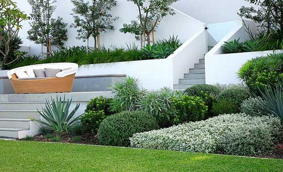Latest-Landscaping-Trends